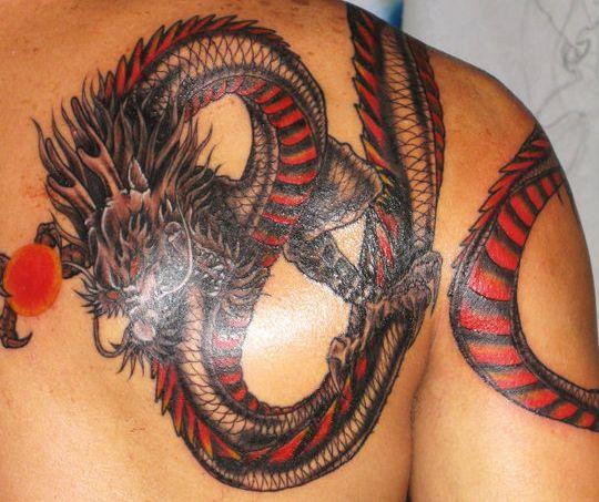 tatouage dragon rouge - tatouage dragon sur modele2tatouage